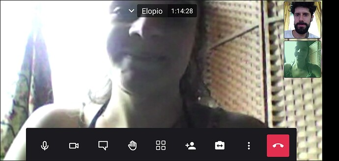 Screenshot_20210823-121324_Jitsi_Meet